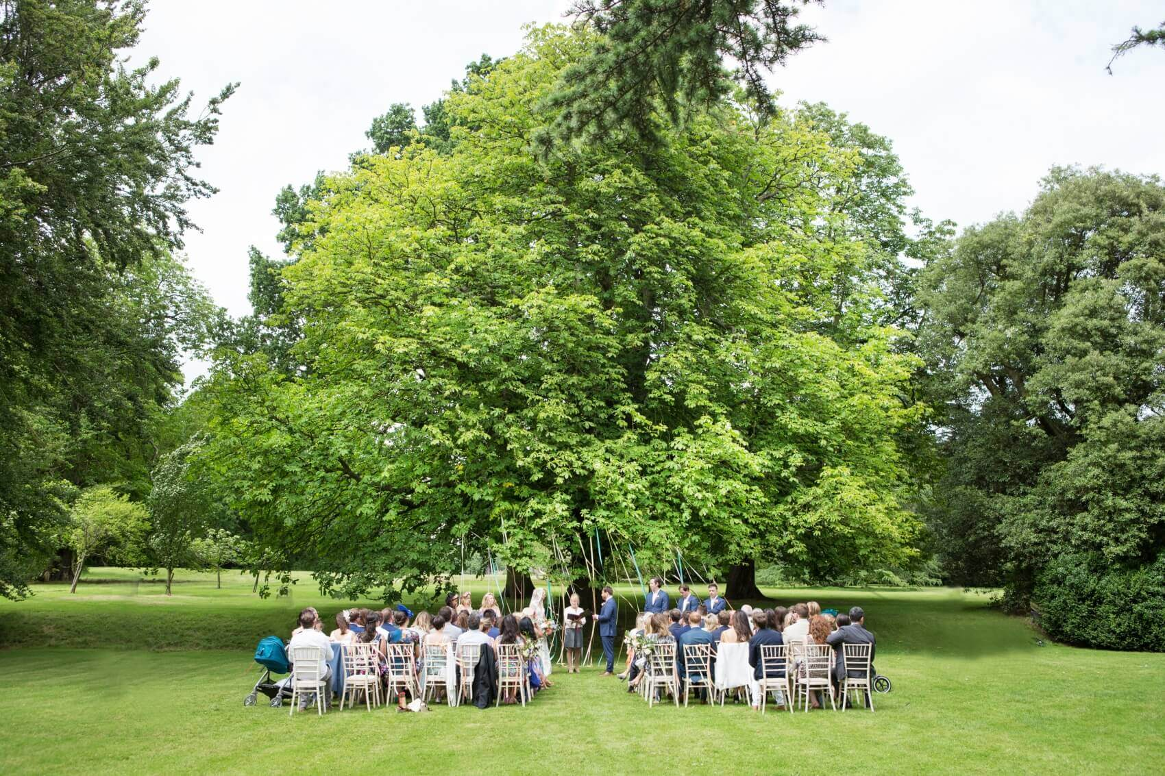 Outdoor wedding ceremony under an old tree with ribbons